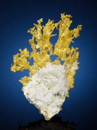 NATIVE GOLD Eagle's Nest Mine, Michigan Bluff Dist., Placer Co., California, USA