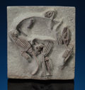 Fossils:Arthropoda, EXQUISITE SMALL MULTIPLE CRINOID PLATE WITH EXCEPTIONALPRESERVATION. Crinoids (various genera and species).Mississip...