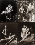 """Movie Posters:Adventure, Tarzan and His Mate & Other Lot (MGM). Reprint Portrait Photos(7) (11"""" X 14""""). Adventure.. ... (Total: 7 Items)"""