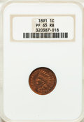 Proof Indian Cents: , 1891 1C PR65 Red and Brown NGC. NGC Census: (48/6). PCGS Population(44/2). Mintage: 2,350. Numismedia Wsl. Price for probl...