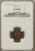 Indian Cents: , 1877 1C XF45 NGC. NGC Census: (145/324). PCGS Population (228/425).Mintage: 852,500. Numismedia Wsl. Price for problem fre...