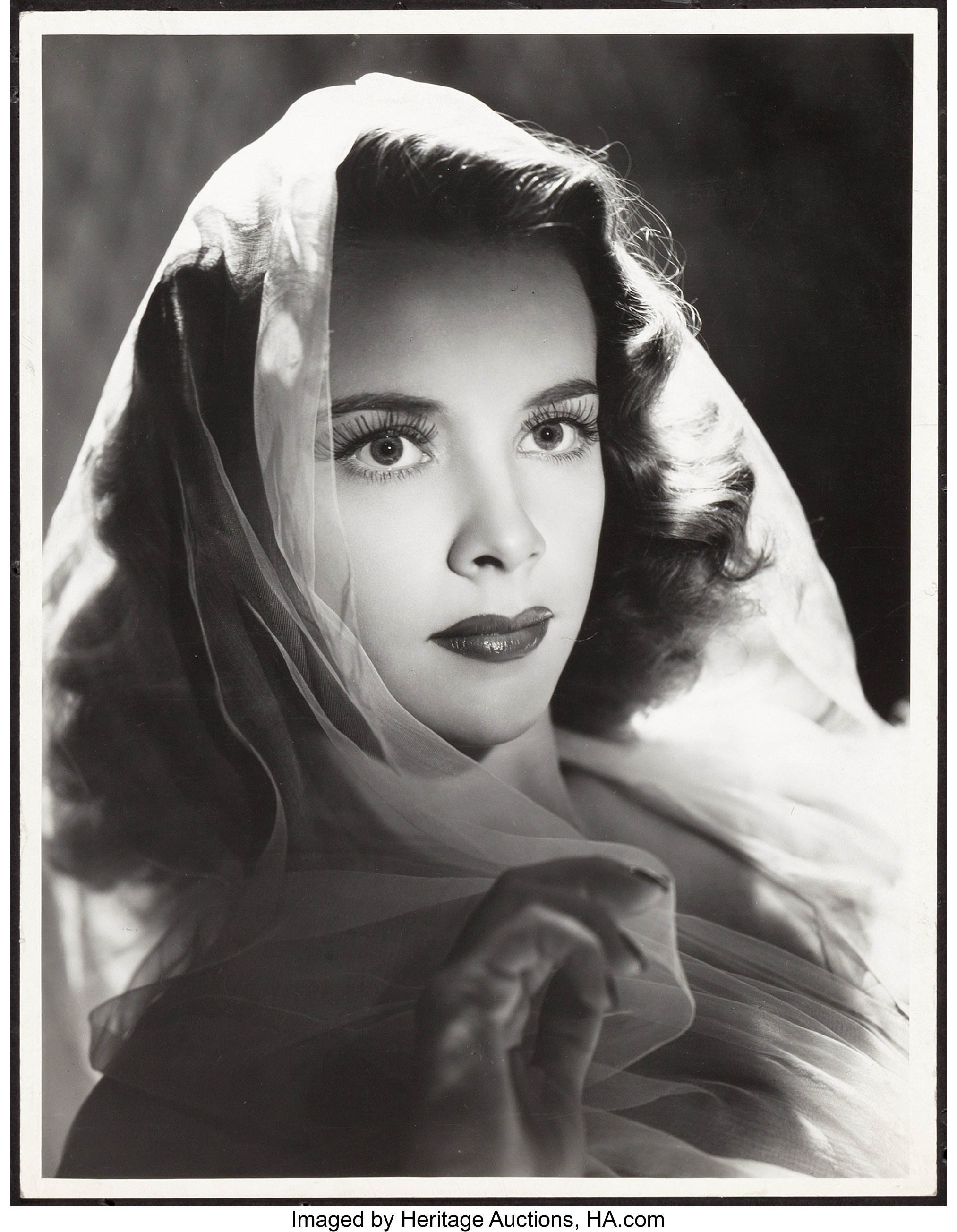 "Susan Peters (MGM, 1943). Portrait Photo (10"" X 13""). Drama ..."
