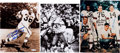 Football Collectibles:Photos, 1950's/60's Cleveland Browns Signed Memorabilia Lot....