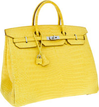 Hermes 40cm Matte Mimosa Porosus Crocodile Birkin Bag with Palladium Hardware