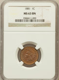 Indian Cents: , 1881 1C MS63 Brown NGC. NGC Census: (50/121). PCGS Population(42/66). Mintage: 39,211,576. Numismedia Wsl. Price for probl...