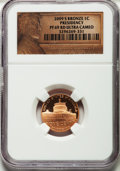 Proof Lincoln Cents, 2009-S 1C Bronze Formative Years, PR69 Red Ultra Cameo NGC and 2009-S 1C Bronze Presidency, PR69 Red Ultra Cameo NGC. ... (Total: 2 coins)