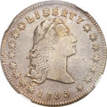 Early Dollars, 1795 $1 Flowing Hair, Two Leaves XF45 NGC. B-1, BB-21, R.2....