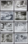 """Movie Posters:Animation, The Fox and the Hound (Buena Vista, 1981). Photos (20) (8"""" X 10""""). Animation.. ... (Total: 20 Items)"""
