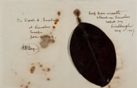 [Abraham Lincoln] and [H. W. Fay] . Leaf from Abraham Lincoln's Tomb