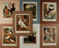 Art:Illustration Art - Mainstream, [Bird Illustration]. Group of Seven Avian Chromolithographs. Ca.1874. Color well preserved. Works taken from Cassell's Pi...
