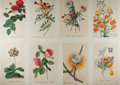 Books:Prints & Leaves, [Flowers]. Group of Eight Modern Color Prints. Measure 17 x 12.25inches. Near fine....