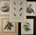 Art:Illustration Art - Mainstream, [Birds]. Various Artists. Group of Four Chromolithographs and One Hand Tinted Engraving. Various Dates. Engraving of Parrots...