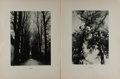 Art:Illustration Art - Mainstream, [Lithography]. Group of Two Botanical Photolithographs. N.d. Light toning. Minor creases to edges. Good to better....