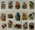 Art:Illustration Art - Mainstream, [Birds]. Group of Fifteen Avian Chromolithographic Prints. Previous binding marks along one edge to all. Some light creasing...