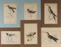 Art:Illustration Art - Mainstream, [Birds]. Group of Six Hand Tinted Avian Engravings. 6.5 x 4.25inches. Plates tipped in and matted. Light to moderate toning...