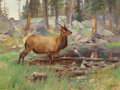 Western:20th Century, CARL CLEMENS MORITZ RUNGIUS (American, 1869-1959). Elk,1906. Oil on canvas. 18 x 24 inches (45.7 x 61.0 cm). Signed low...