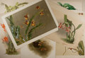 Art:Illustration Art - Mainstream, [Illustration]. Group of Seven Botanical Prints. Most measure 20.75x 15.25 inches, loosely. Some matted. Minor to heavy ton...