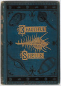 Books:Natural History Books & Prints, H. G. Adams. Beautiful Shells Their Nature, Structure, and Uses Familiarly Explained. Groombridge and Sons, 1887...