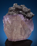 Minerals:Small Cabinet, FLUORITE. Elmwood Mine, Carthage, Central Tennessee Ba-F-Pb-ZnDist., Smith Co., Tennessee, USA. ...