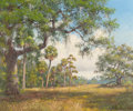 Fine Art - Painting, American:Contemporary   (1950 to present)  , ALBERT E. BACKUS (American, 1906-1991). Afternoon FloridaLandscape, 1985. Oil on canvas. 20 x 24 inches (50.8 x 61.0cm...