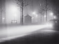 Photographs:20th Century, BRASSAÏ (French, 1899-1984). Avenue de l'Observatoire, 1934.Gelatin silver . 9-3/8 x 12-1/2 inches (23.8 x 31.8 cm). Si...