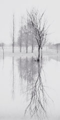 Photographs:20th Century, MICHAEL KENNA (British/American, b.1953). Reflection, Richmond,Surrey, England, 1975. Gelatin silver, 1979. 8-3/4 x 4-1...