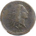 Large Cents, 1793 1C Wreath, Vine and Bars, S-10, B-10, R.4 -- EnvironmentalDamage -- PCGS Genuine. VF Details....
