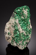 Minerals:Cabinet Specimens, TORBERNITE. Musonoi Mine, Kolwezi, Kolwezi District, KatangaCopper Crescent, Katanga (Shaba), Democratic Republic of the...