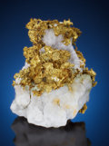 Minerals:Golds, NATIVE GOLD on MATRIX. Tightner Mine, Alleghany, ForestDistrict, Sierra Co., California, USA. ...