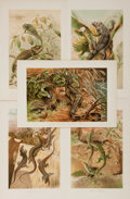 "Books:Natural History Books & Prints, [Natural History] Lot of Five Antique Hand Colored Illustrations of Various Lizards. 6.25"" x 10"" in portrait and landscape f..."