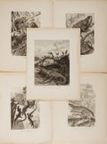 """Books:Natural History Books & Prints, [Natural History Illustrations] Lot of Five Antique Illustrations of Various Types of Lizards. 9.5"""" x 13"""". Removed from a la..."""