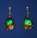 Gems:Jewelry, AMMOLITE TEARDROP EARRINGS - 14 KT. GOLD...