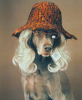 Photographs:20th Century, WILLIAM WEGMAN (American, b. 1943). Reader, 1999. Irisprint, 1999. 19-1/2 x 16 inches (49.5 x 40.6 cm). Ed. 11/100.Sig...