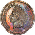 Proof Indian Cents, 1877 1C PR65 Brown NGC....