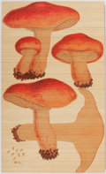 Antiques:Posters & Prints, [Wall Decor]. Color Printed Display of Mushrooms. Printed on wood. Measures approximately 12 x 20 inches. Fine condition....