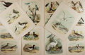 Books:Prints & Leaves, [Ornithology]. Group of ten color bird prints. Approximately 14.5 by 11.5 inches. Some edgewear, else very good....