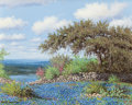 Paintings, ROBERT HARRISON (American, 20th/21st Centuries). Texas Field of Bluebonnets. Oil on canvas . 16 x 20 inches (40.6 x 50.8...