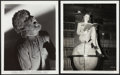 """Movie Posters:Horror, The Wolf Man (Universal, 1941). Photos (6) (8"""" X 10"""").. ... (Total: 6 Items)"""