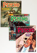 Magazines:Horror, Psycho Group (Skywald, 1971-75) Condition: Average FN/VF.... (Total: 26 Comic Books)