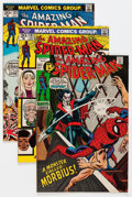 Bronze Age (1970-1979):Superhero, The Amazing Spider-Man #100-127 Group (Marvel, 1971-73) Condition:Average FN/VF.... (Total: 28 Comic Books)