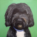 Movie/TV Memorabilia:Memorabilia, Pet Portrait. Benefiting Ability Connection Texas. ...