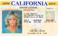 Movie/TV Memorabilia:Documents, A Farrah Fawcett Driver's License, 2009. ...
