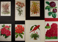Books:Natural History Books & Prints, [Natural History Prints] Lot of Eight Hand-Colored Illustrations of Various Types of Flowers. Matted, to various sizes from ...