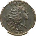 Large Cents, 1793 1C Wreath Cent, Vine and Bars -- Burnished -- NGC Details. XF.S-6, B-7, R.3....