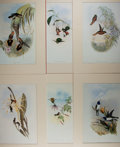Miscellaneous:Ephemera, [Hummingbirds]. Group of Six Reproductions of John GouldHummingbird prints. Beautifully colored illustrations depictingdif...