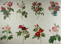 """Miscellaneous:Ephemera, Group of Eight Floral Prints. Each leaf measures 12.5"""" x 15.5"""". In French. Disbound from a larger volume. Fine.. ..."""