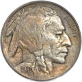 Buffalo Nickels, 1916 5C Doubled Die Obverse AU55 PCGS. CAC. FS-101....