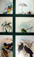 Books:Natural History Books & Prints, [Natural History] Lot of Six Fabulous Color Lithograph Bird Prints by John Gould and William Hart. Uniformly matted to an ov...
