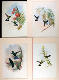 Books:Natural History Books & Prints, [Natural History Prints] Group of Four Color Lithographs of Hummingbirds. Three examples uniformly matted to an overall size...