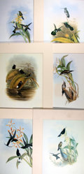 "Books:Natural History Books & Prints, [Natural History Prints] Group of Six Color Lithographs of Hummingbirds. Uniformly matted to an overall size of 13.5"" x 17.7..."
